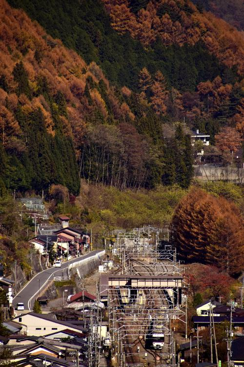 """この素敵な紅葉風景を前にして、先ずは""""鉄活""""でもw<br />紅葉色に染まる宿場町の風景と一緒に、383系「特急ワイドビューしなの」を一枚パチリ☆"""