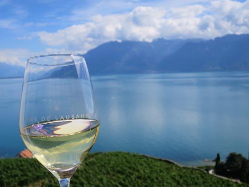 美しすぎる景色に乾杯!!
