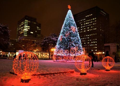 ◇大通1丁目会場<br />地上だって負けてません。<br />赤色イルミネーションで<br />クリスマスムードが急上昇~。