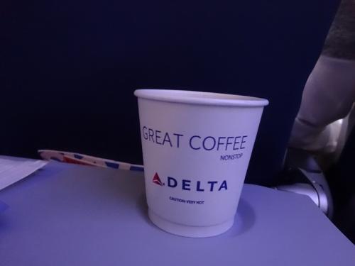"""驚いたのが、アイスの緑茶があったこと。大した数乗っていませんが、海外の航空会社でアイス緑茶があったのは初めてです。台湾に行くときにお世話になるエバー航空でさえ、ウーロン茶はあっても緑茶はありませんから。<br /><br />なんか、アメリカの航空会社っていうことで、ユナイテッドなどとイメージが一緒になって""""コストかけない・ケチ""""という印象を持っていたのですがむしろ逆でした。これは大きな発見でしたね。"""