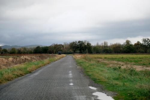 全くの田舎道で、すれ違いも簡単には出来そうにない簡易舗装の道路が続いている。