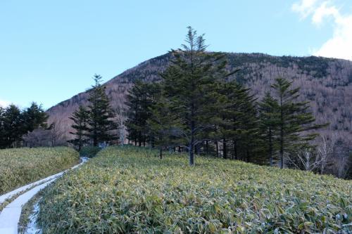 目指す山王帽子山が見えます!