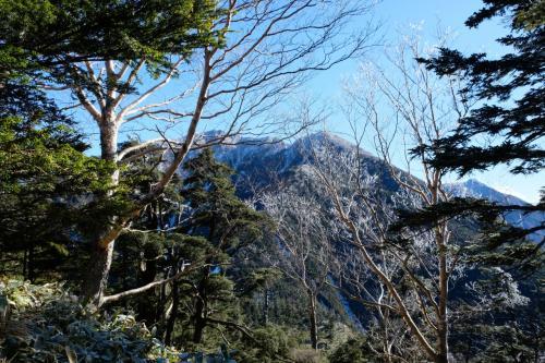 目指す!太郎山が見えてます。<br />たどり着けるんでしょうか?