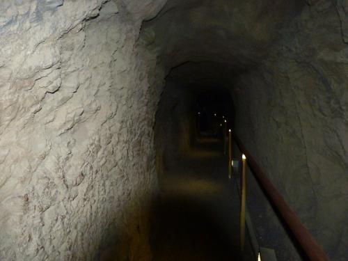 頂上付近はこのようなトンネルを抜けるがすれ違う巾がほとんど無い