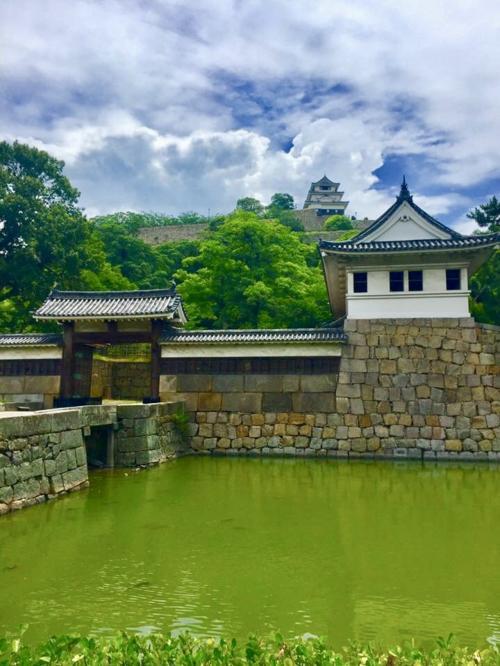 丸亀城を目指します!