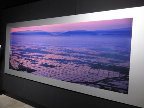 天野氏は新潟出身で、国内写真は新潟で撮られたものが多い。<br /><br />弥彦山から撮られた朝焼けに染まる蒲原平野。ピンクに染まる水田と霧が立ち込める神秘的な様子、本当に美しい~!