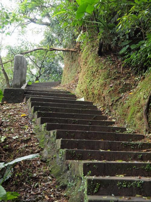 す・・・すごい階段<br /><br />どこまで続くんだろう