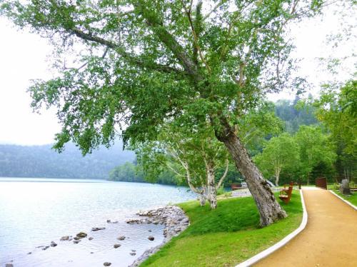 カヌーの予約は13時で、まだ時間があったので、ランチのあと湖畔を少しお散歩。