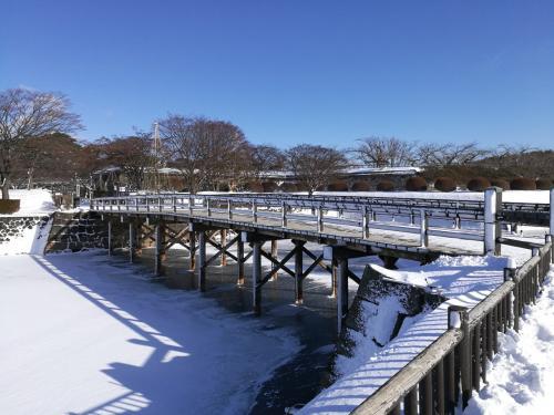 堀も凍っています。明治初期には商人が氷を切り出し東京に送っていたそうです。<br />橋の下が雪が無く氷がよくわかります。
