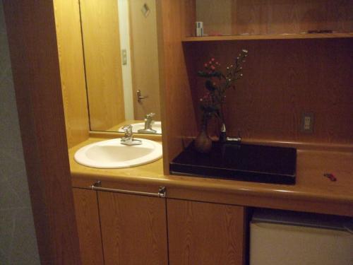 客室内には洗面&トイレまで完備!