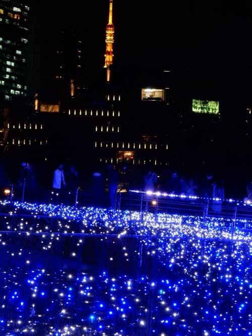 その青色の向こうに赤い東京タワー
