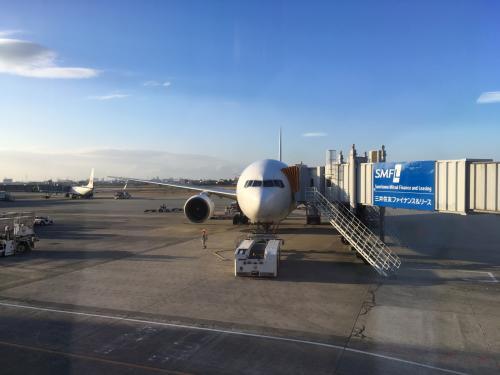 どうやら滑走路上に落とし物が見つかったために、ゴーアラウンドしたようでした。<br />お陰さまで20分以上の遅延となって大阪空港に到着しました(汗)<br /><br />関西空港に降りなくてホッとしました(汗)