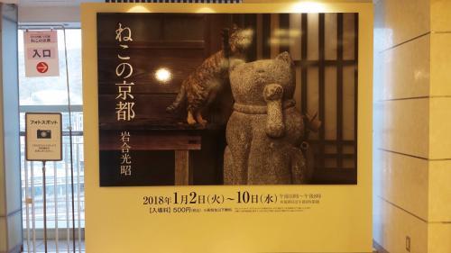 この写真についてはトークショーで岩合さんが解説されていましたが、京都の陶芸家さんが蚤の市で買ってきた猫の置物の横で枯葉を掴もうとしている猫ちゃんを撮ったものだそうです。