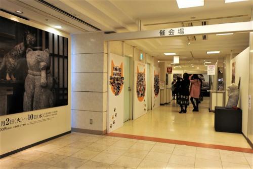 入口には事前に募集されていた一般の方々の猫写真が沢山飾られていました。