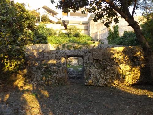 (。・ε・。)ムー<br />やはり沖縄は本土とは全く違う<br />歴史、慣習をお持ちなの・・・。
