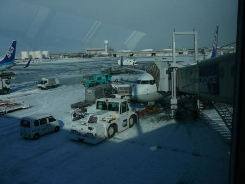 お世話になる機体はまたもB737―800
