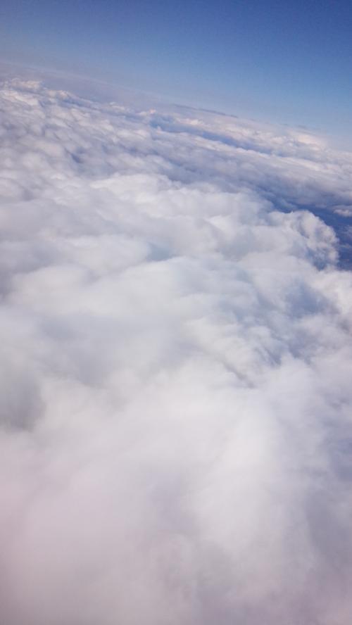 この日は曇っていたので雲が多めでした。いつみてもおいしそう……w