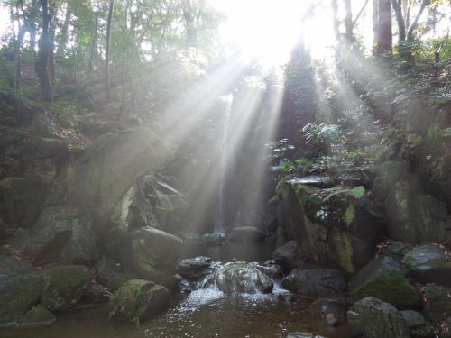 公園の隅にある「雄飛の滝」で、滝で生じる霧に太陽光が放射状に反射して幻想的な光景を創り出していました。