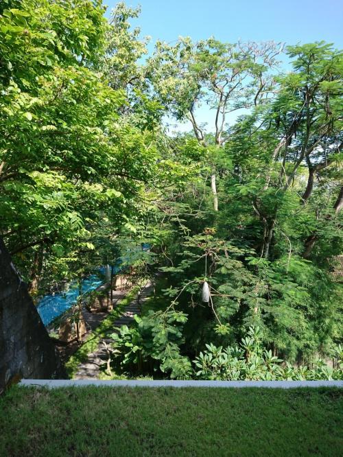 ベランダからの風景です。<br />木々に囲まれています。青々としていて綺麗。