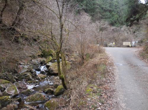 滝への道は良く整備されていました。