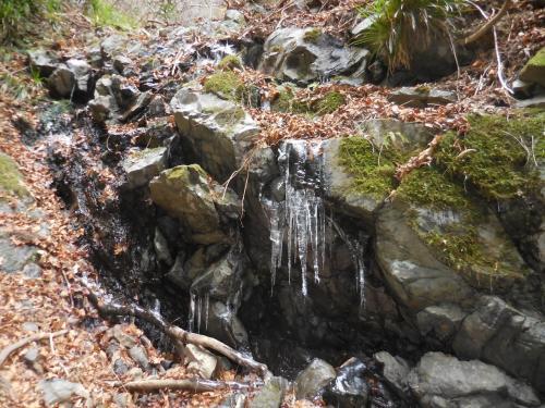 この場所はマイナス4度!<br />ご覧の様に大きな氷柱が滝周辺にはビッシリと。久しぶりにこんなの見たよね。<br />