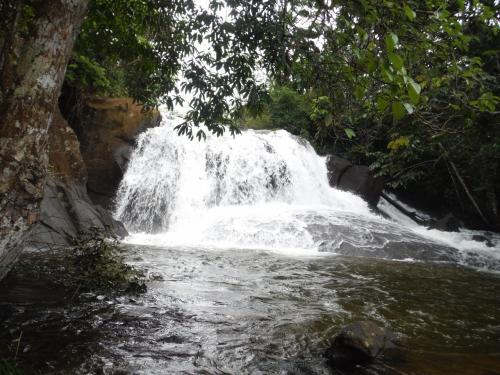 帰り道に小さな滝があり、皆んなで泳ぐ。リラックス。