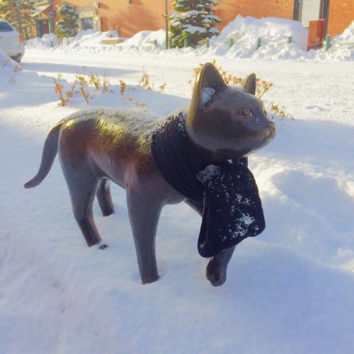 良い天気だな猫よ。<br />良いの巻いてるな。