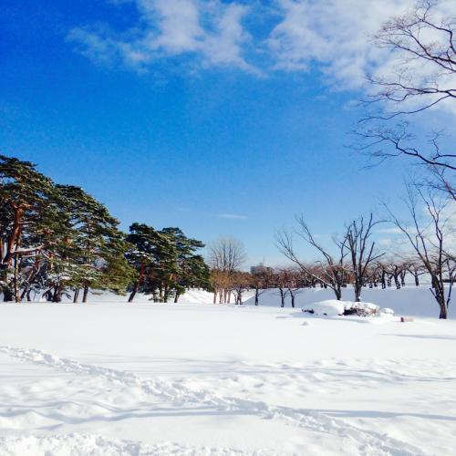 公園内も真っ白。