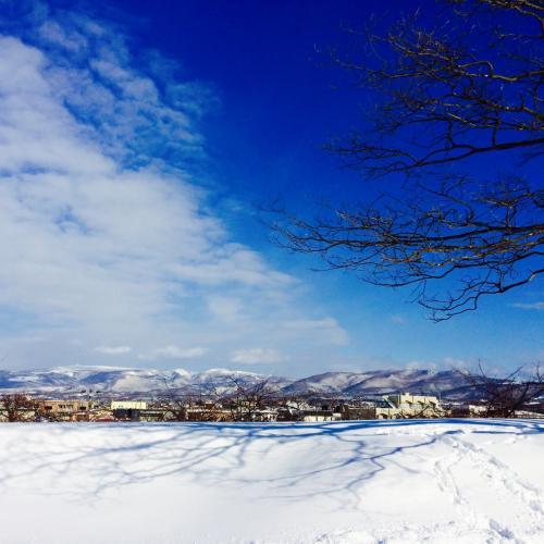 滑って転んだりしていたせいでしょう、予備のスマホ(壊れてるお古のやつ、主力の電池温存のためこっちで写真撮ったりWi-Fiでネットしたりしていた)が雪の中のどこかへ消えました。<br />まさに頭真っ白、しかし先ほど現実を見るのはやめたのでショックは受けませんでした。<br />こんなことあるもんだな。<br />旅の写真、なくなったな。<br />思い当たる場所を往復して探すもまったく見当たらない。<br />もしかしたら…と思って家に帰ってから泣きながらアイクラウドを確認したら、写真が全部保存されていました。<br />アップル!!!!!<br />クラウドのこと、よくわからなくてめんどくさいとか思ってて本当に申し訳なかった。