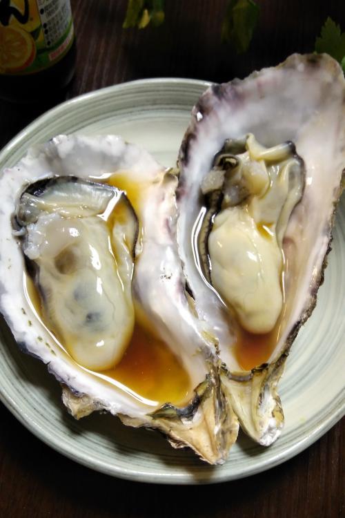 次男「広島行ったら殻付きの牡蠣が食べたいなぁ~」<br />なんとも天真爛漫なリクエストが。<br /><br />実家は岡山寄りの福山市なので牡蠣の産地ではない。<br />それに実家から山口は結構遠いぞ?!※山口←広島市←福山市(実家)<br /><br />よし、こうしよう。<br />今日は広島市内に泊まって牡蠣を食べる。( ̄皿 ̄) <br />明日はそこから車で山口、電車で実家へ各自解散!!<br /><br />ってことで急遽広島の東横インを予約。<br />当日でもなんだかんだ空いてるってスバラシイ。