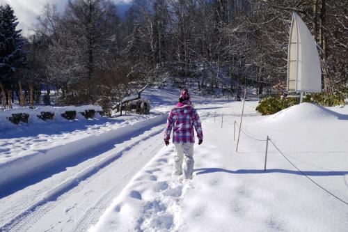 アドバイス通り、除雪が入ったところは歩かないで、脇のふわふわの雪の上を歩きます。