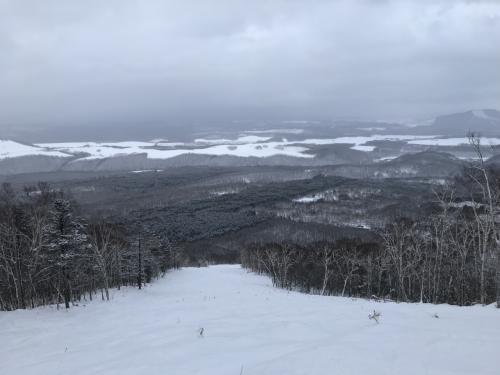 あまり人が滑らないセカンドノースアベニューは新雪でふっかふか