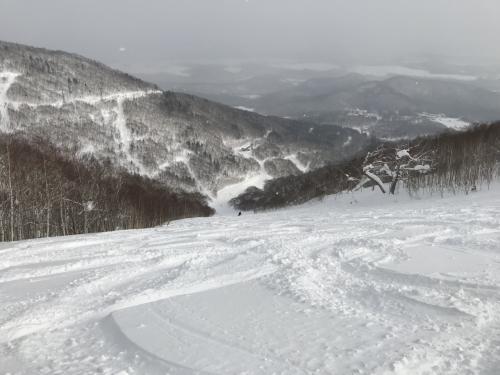 最大斜度36度のセントラル・ウェイも新雪のパウダースノー