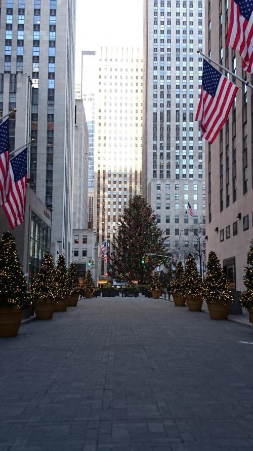 ロックフェラー近くのクリスマスツリーが見えてきました。