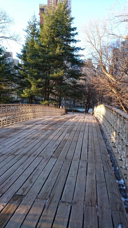 日本の太鼓橋の様な物?