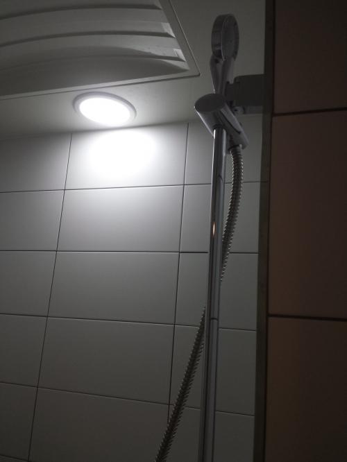 シャワーもお湯が出る