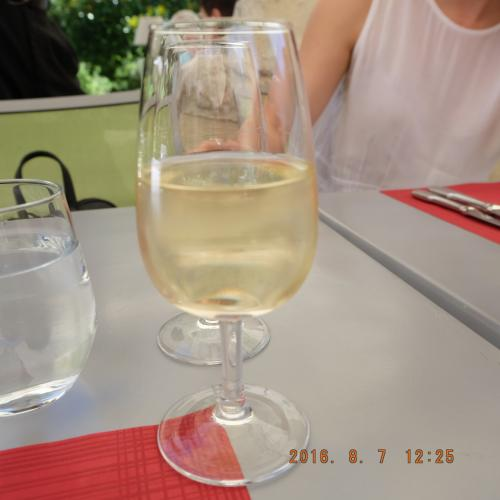 ランチはツアー代の135ユーロに含まれています。さらにランチにはグラスワイン二杯がついてきます。まずは冷えた白。merci bien!<br /><br />お話が弾みます。