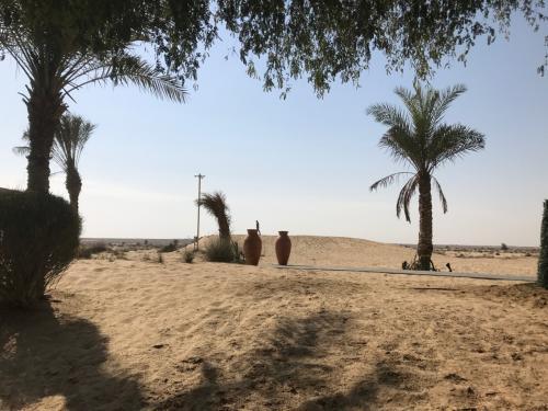 タクシーを呼んでもらってる間に、最後に砂漠をもう一回(^^)<br /><br /><br />Bab Al Shams Desert Resort&Spaの感想ですが、ここを堪能するには2泊はしたいですね。<br />ただ難点は、夕食を含めた滞在費・・・。<br />設備投資やエンターテイメント性を考えると、コストがかかっているとは思いますが、家族旅行だとけっこうキツイですね(汗)