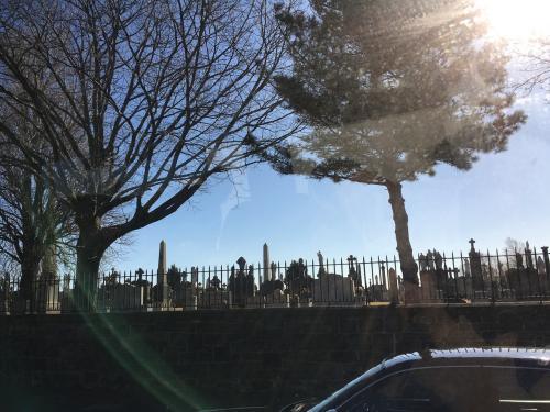 途中墓場近く通りました。<br />アメリカは土葬なんだよね