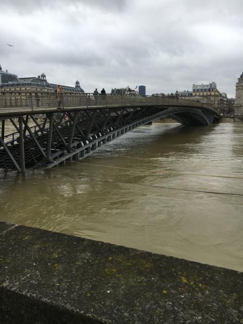 それにしても、水が濁っています。普段どんなかんじかわかりませんが、明らかに豪雨の後といったかんじですね。