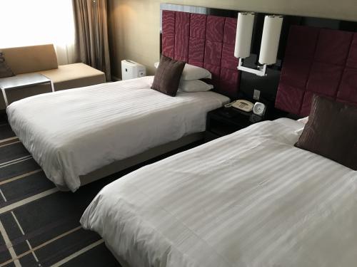 今回の宿泊先、ホテル日航金沢にチェックイン。<br />駅からも近く、清潔で良いホテルでした。<br /><br />また金沢に行くことがあれば、利用したいと思います。