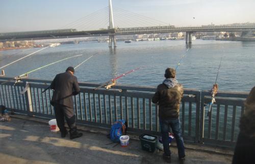 この釣り人の獲物は鯵と鰯がほとんどです。