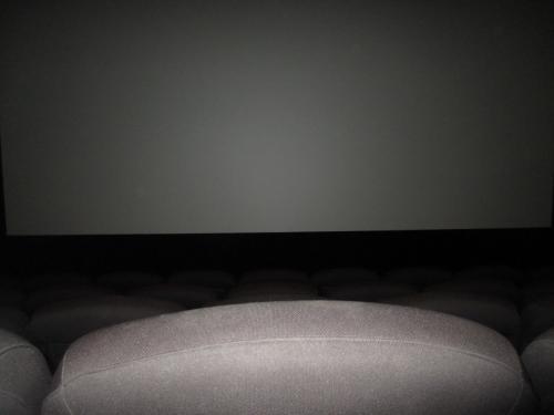 急遽宿泊することにしたのは、このため。<br />映画を見るのが目的。小生の地元では公開されない特殊な(?)映画なので。<br />それはシネマファイターズ。キャナルシティのユナイテッドシネマで観る。