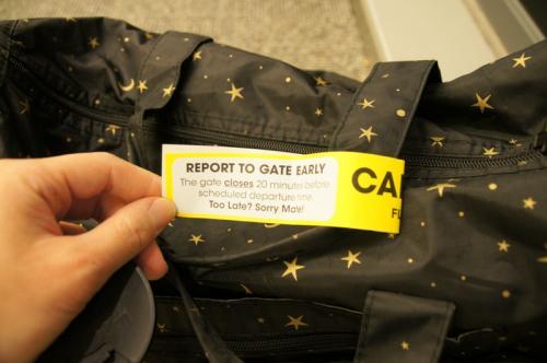 手続きはJALのスタッフさんでした。<br /><br />往復の受託手荷物(20㎏)をオプションでつけたためスーツケースを預けます。<br />重さは7㎏。