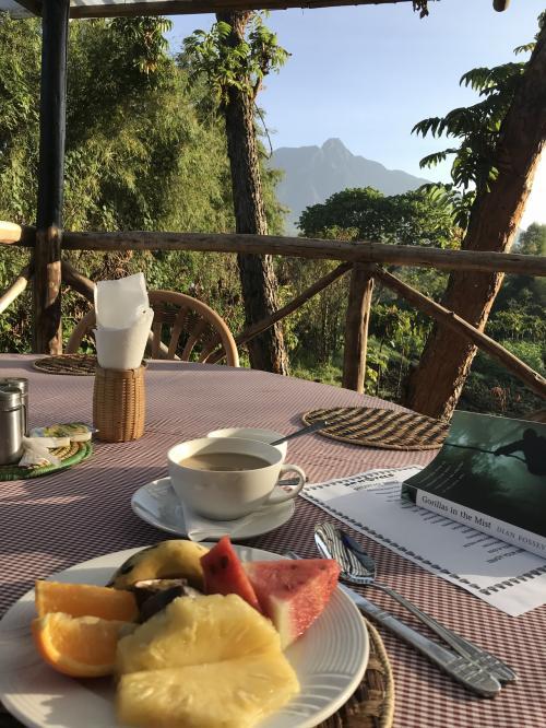昨日お茶をしたテラスで朝ごはんをいただきます!<br />まずはフルーツと紅茶を(^^)<br />気持ちがいいです。