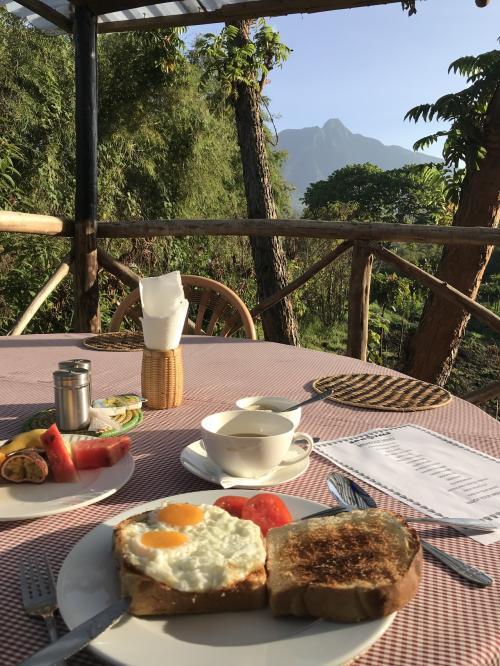 目玉焼きとトースト<br />パンがサクサクふわふわ^ ^<br />美味しくいただきました!<br />朝は少し涼しくて薄い長袖を羽織るくらいで快適に過ごせます。<br />今朝は鳥達の歌声がいっそう賑やか<br />日本では体験できない最高に贅沢な朝食です。