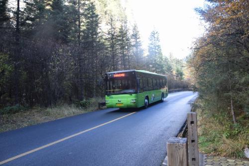 ゲートから専用バスで原始森林景区へ、そこから徒歩やバスで観光します。バスは何回でも乗り降り自由です。観光地点にはバス停があります。10分おきぐらいにきます。観光地点で降りて徒歩で観光次のバス停で次のバスに乗るなどアレンジできます。