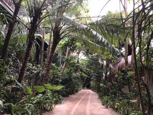 鬱蒼とした森の中にヴィラはあります。全長は800メートルとか。意外とコンパクトな印象です。