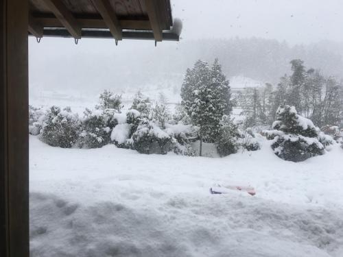 雪で覆われた実家から眺めた、家の前と川向かいの家。