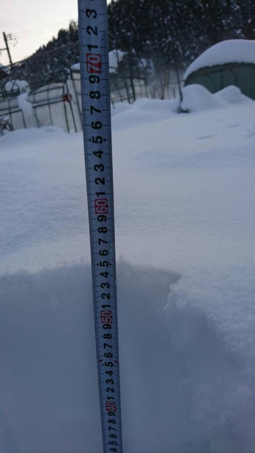 大雪の時、実家で図った1晩で積もった雪の積もり具合。